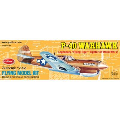 p40 warhawk model
